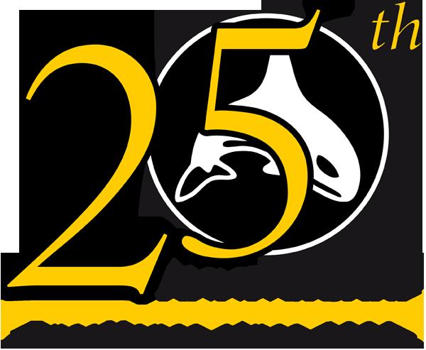 DiveSystem 25th anniversary Logo